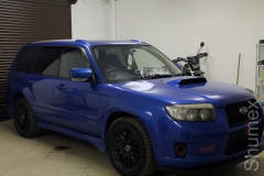 Forester_2